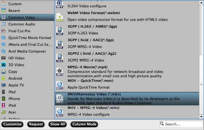 Output MKV file format