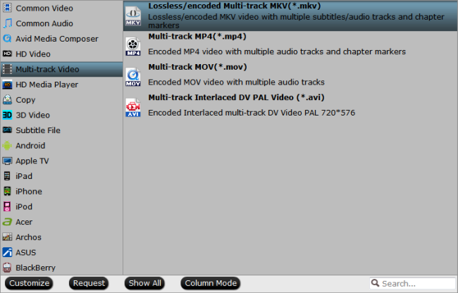 Select multi-track MKV format