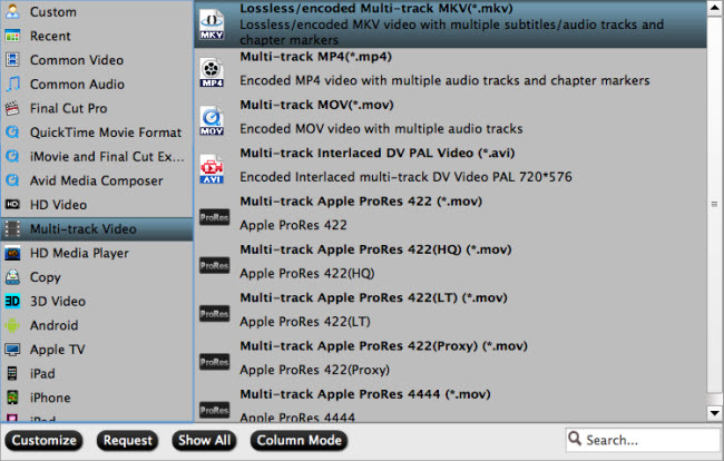 Backup to multi-track video