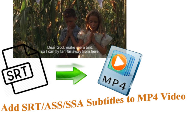 add srt ass ssa subtitles to mp4 video