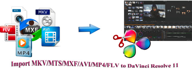 import mkv mp4 mxf avi flv to davinci resolve 11