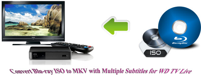convert blu-ray iso to mkv with multiple subtitles for wd tv live