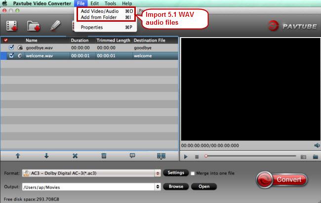 import 5.1 wav to wav to ac3 converter