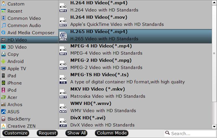 HEVC H265 Converter preset