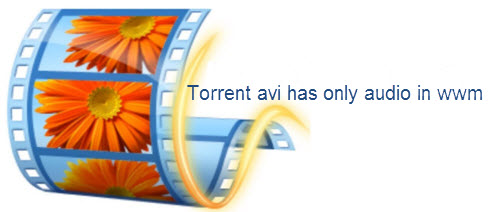 Torrent AVI has only audio in Windows Movie Maker