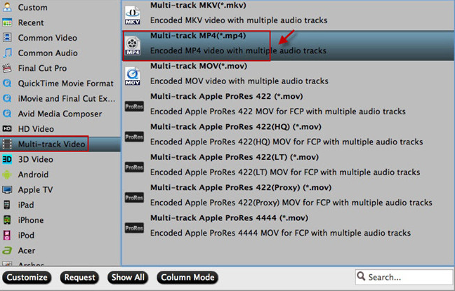Output to Multi-track MKV/MP4/MOV