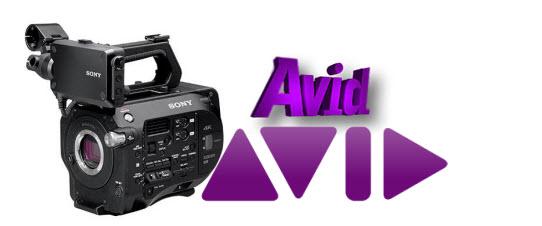 Sony XAVC S to Avid