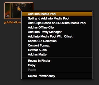 Add into media pool