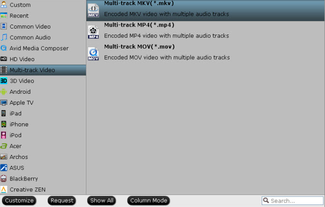 output-multi-track-format