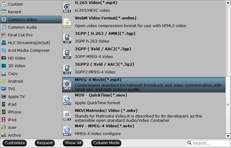 Output media player supported video formats