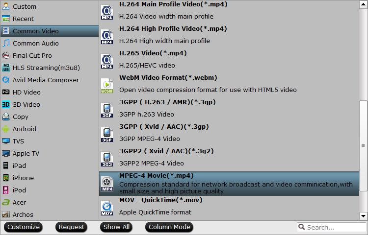 Output After Effects CC supported editing formats