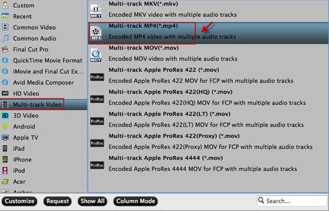 multi-track formats