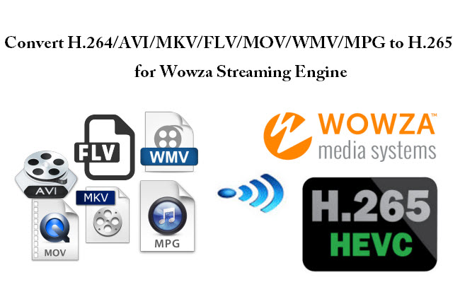 Convert Video to H.265 MP4 to stream on Wowza Engine 4.1