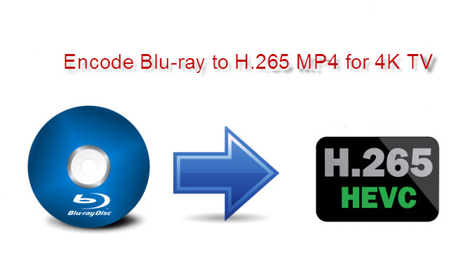 Output Blu-ray Collection to MP4 Using H.265 Codec for Viewing on 4K TVs