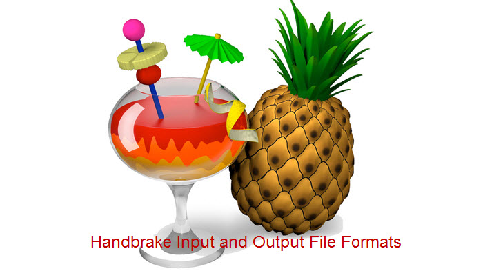 Handbrake Supported Input and Output File Formats